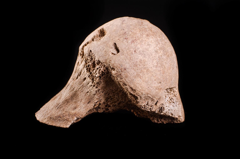 Achados arqueológicos catalogados / Matéria óssea